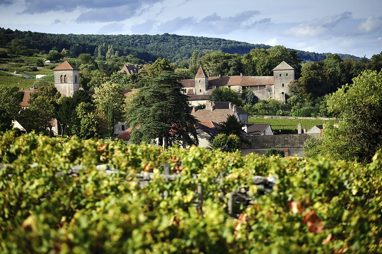 """Gevrey-Chambertin """"Vieilles Vignes"""" - Maison Jaffelin"""